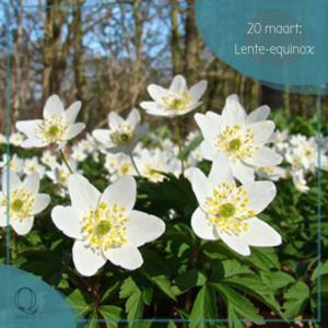Bron Q: Lente-equinox @ StilleWateren | Amersfoort | Utrecht | Nederland